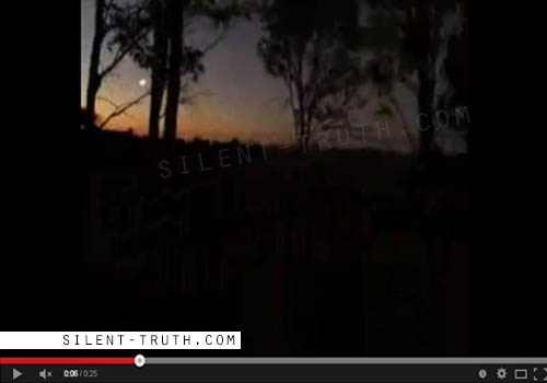 Australia_Forest_Encounter_UFO_Image_1