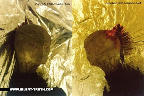 Dr_Reed_Alien_Image_3