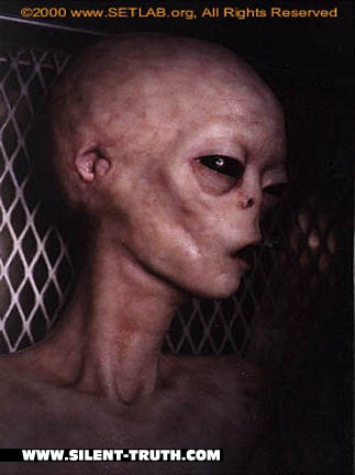 J_Rod_Alien_Image_2