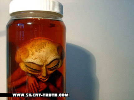 Pickled_Aliens_Image_1