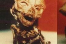 Salinas_Alien_Image_Header