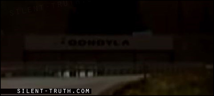 علامت و امضاء جاعل ویدئو (Oondyla) در انتهای جاده ثبت شده است .
